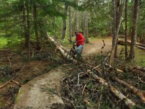 trail_debris
